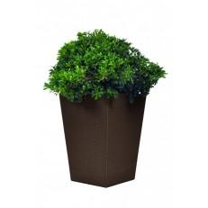 KETER Květináč Rattan Planter L Brown