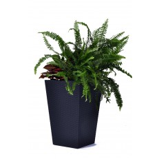 KETER Květináč Rattan Planter M Dark grey