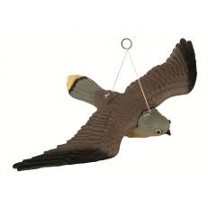 Plašič ptáků sokol - poštolka