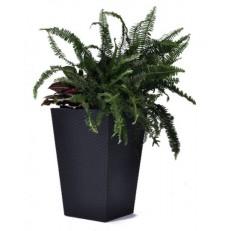 KETER Květináč Rattan Planter L Anthracite