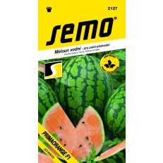 Meloun vodní - Primaorange F1 oranžový 8s