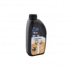 Motorový olej Riwall pro extrémní zimní použití (SAE 5W-30, 1 l)